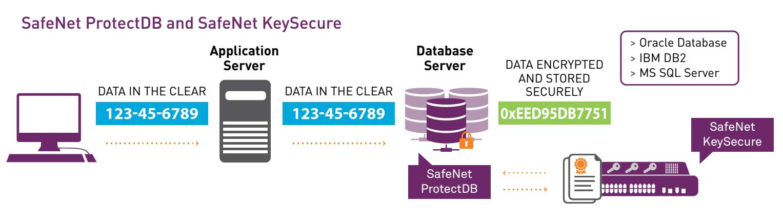 safenet2